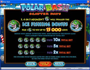 Polar-Bash-bonus-2