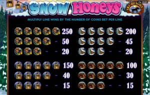 Snow-Honeys-paytable-2