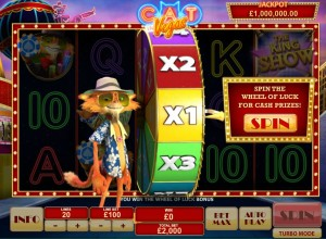 Cat-in-Vegas-wheel-of-luck-2