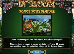 In-Bloom-bonus-bump