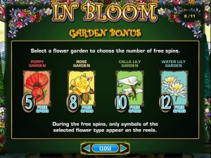 In-Bloom-garden-bonus-2