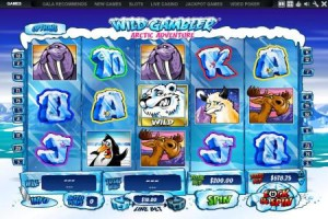 Wild-Gambler-Artic-Adventure